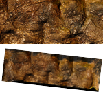 Cave Wall Backdrop (Crafted) #001 PDF